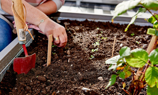 plantekasser-urban-gardening-planter
