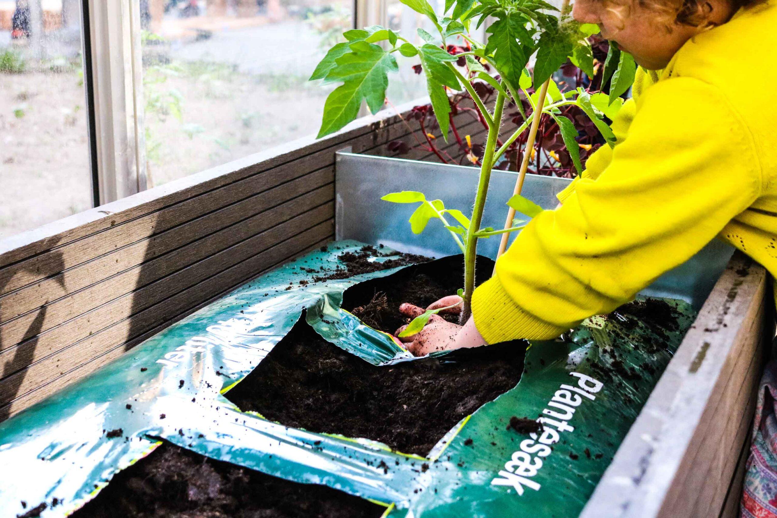 2019-04-30 plantedag i Iris Hus